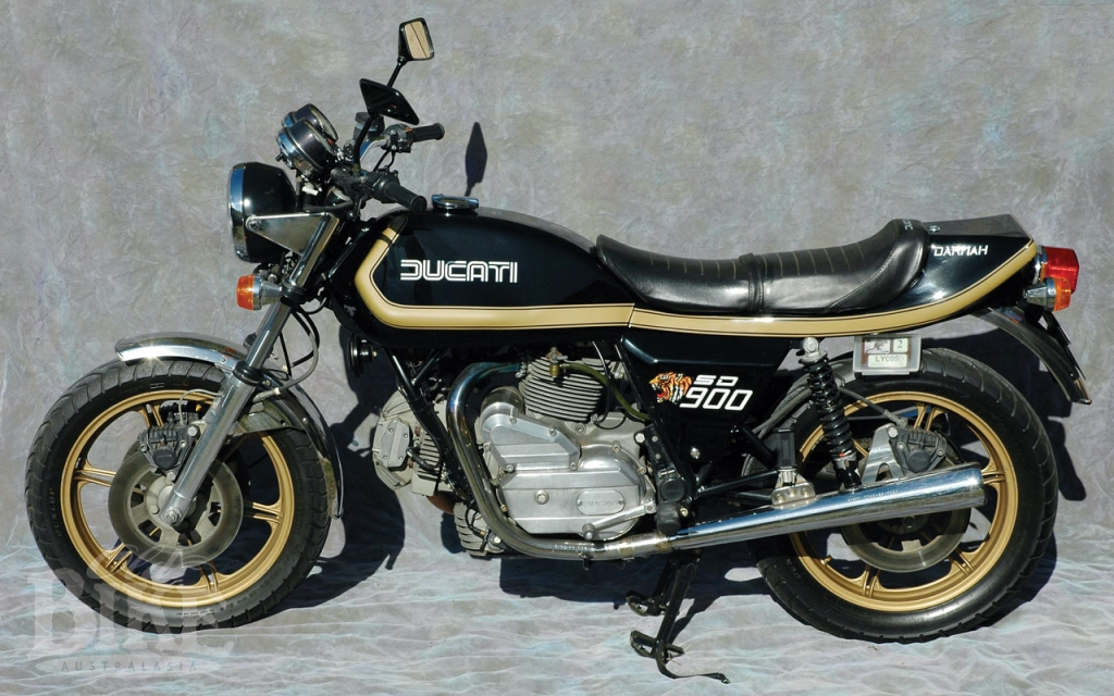 SD900 Ducati Darmah: An Alsatian in Tiger's clothing